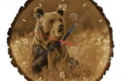 medved-hnedy
